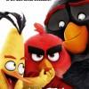 angry birds en Venado Tuerto
