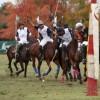 copa san gabriel #polo en Venado Tuerto